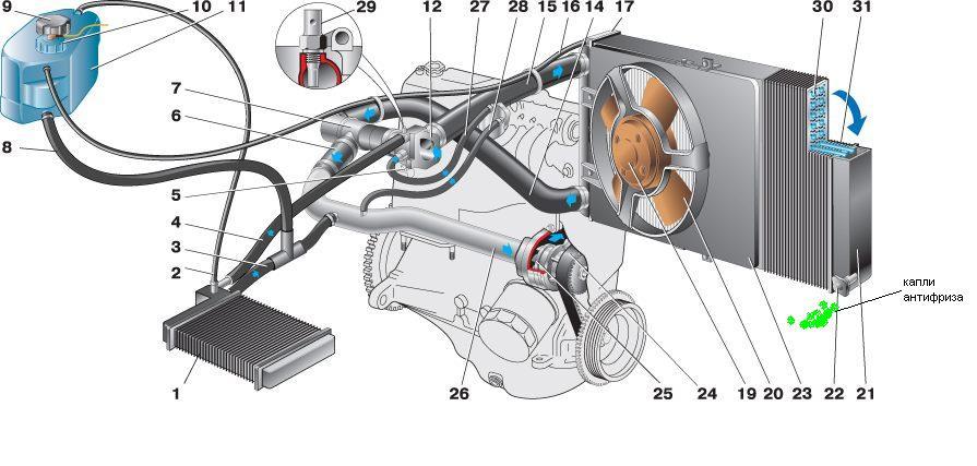 Фото №8 - замена термостата ВАЗ 2110 карбюратор